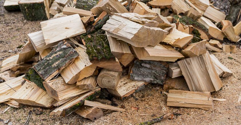 Legna e legnami: caratteristiche